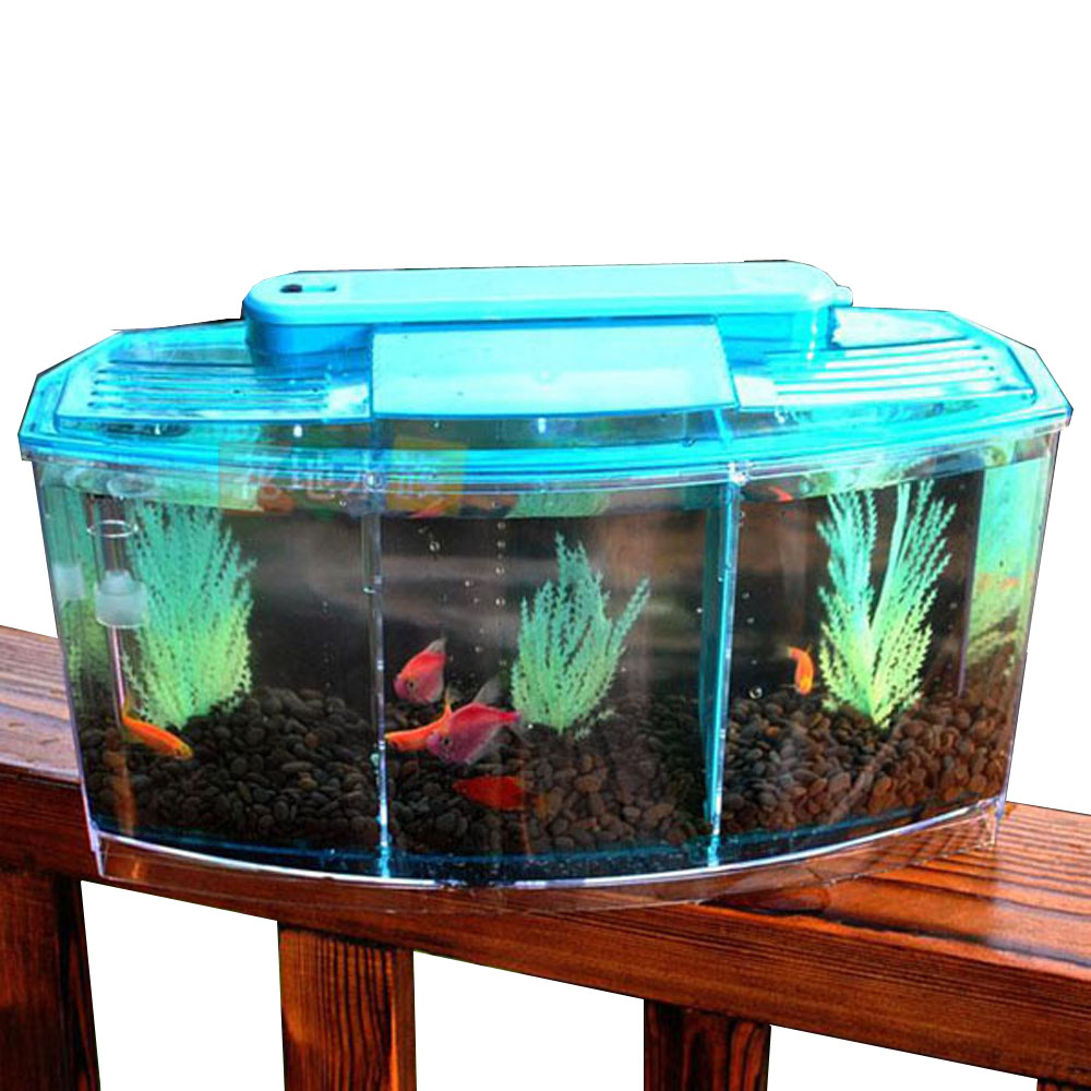 Small aquarium fish tanks - 3 Compartment Acrylic Fish Shrimp Tank Small Aquarium With Led Light Sky Blue
