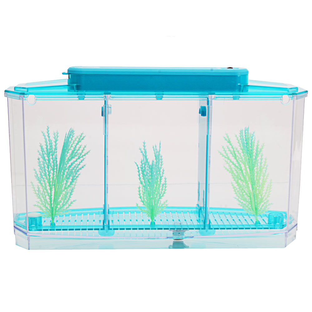 3 compartment acrylic fish shrimp tank small aquarium with for Acrylic fish tank